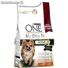 1.5KG dog is adult poulet purina one