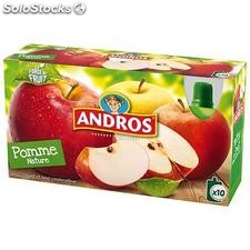 10X90G gourde pomme nature andros