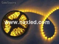 3528 led strips, 120leds/m, ip65 waterproof with epoxy, flexible,super bright