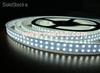 3528 smd led flex strips, 240leds/m, ip68 under water lighting, double line