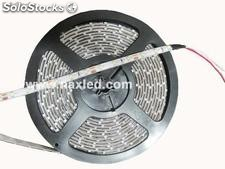 3528 smd led Strip Indoor cool white, 60LEDs/m