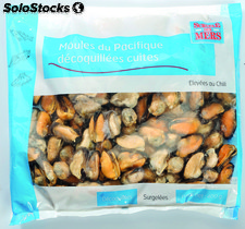 400G moule decoquillee 200/300
