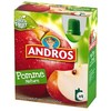 4X90G gourde pomme nature andros