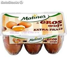 6 oeufs gros maxi d'auge matines