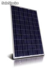 60 Cellules - Polycrystalline Silicon pv Module