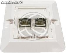 80x80 Wall Plate 2-RJ45 Cat.6 ftp (RI65)