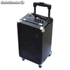 Altavoz APPROX apprave - 30w - wireless bt 2.0+edr - bateria recargable