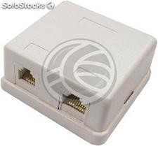 Area of 1 box and 1 RJ45 RJ11 Cat.3 utp Cat.6 (RI21)