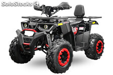 Atv 250cc matriculable biplaza