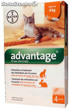 Bayer Advantage 40 Gatos Pipetas 4 UD.