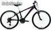 Bicicleta Youth Specialized Hotrock Htrk a1 Fs 24 Girl