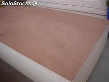 bintangor plywood3mm 5mm 6mm9mm12mm15mm18mm / contrachapado China