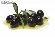 Black Olive with core