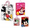 Bolsa Disney Mickey Minnie Mediano