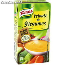 Brick 50CL veloute 9 legumes knorr