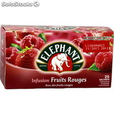 Bte 25ST infusion fruits rouges lipton