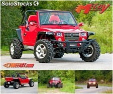 Buggy 1100cc 4x2 JEEP1100 cee 2 Asientos 2016/2017