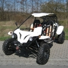 Buggy 500cc tension 4x4 cee matriculable