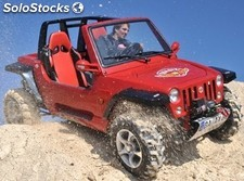 Buggy 800cc JEEP800 4x2 cee 2 asientos