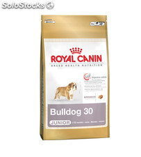 Bulldog Junior 12.00 Kg