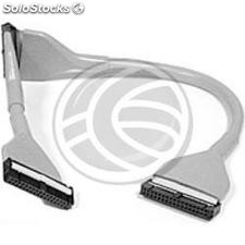 Cable Datos ide Enrollado 55cm (3xIDC40H) (CD06)
