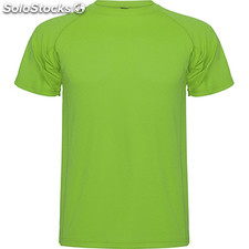Camiseta Hombre 4 verde helecho sport collection