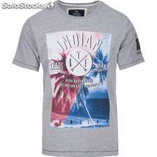 Camiseta palm tree quality - light grey melange - the indian face -