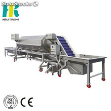 Carrot and potato peeling machine fruit and vegetable processing line