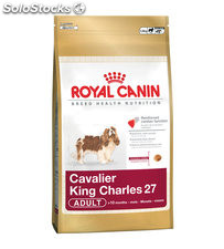 Cavalier King Charles Adult 1.50 Kg