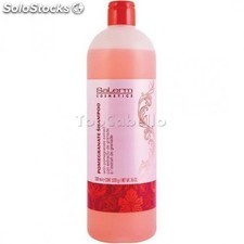 Champú pomegranate salerm 1000ml