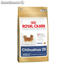 Chihuahua Adult 1.50 Kg