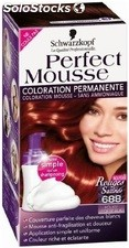 Coloration 100 noir nectra color perfect mousse