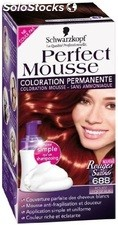 Coloration 688 rouge bordeaux perfect mousse