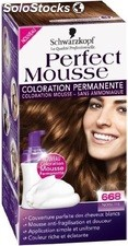 Coloration noisette 668 perfect mousse