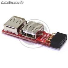 Conversor USB de placa madre 2x5 pin a 2xAH (US32)