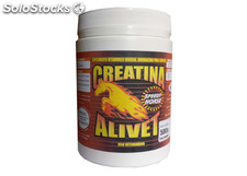 Creatina speed horse