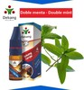 Dekang Doble menta / Double Mint - 6mg