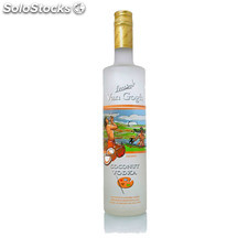 Destilados vodkas - Van Gogh Coconut 100 cl