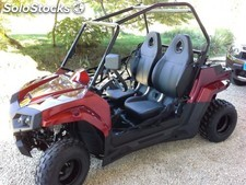 Dinky 150cc UTV street legal 2 asientos