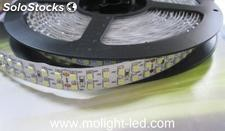 Doble fila tira de led (smd3528)