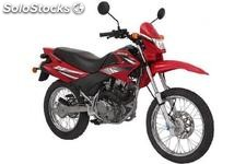 DY150GY-5 dirt bike salta monte 150/200 CC