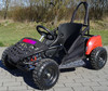 buggy electrico