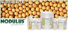 Fertilizante foliar - Nodulus
