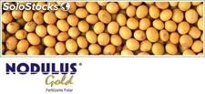 Fertilizante foliar - Nodulus Gold