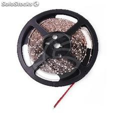 Flexible led strip 6.5 lm/led 60 led/m red 5m (LS11)