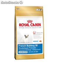 French Bulldog Junior 10.00 Kg