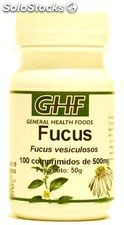 Fucus comprimidos 500mg GHF 100