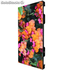 Gabinete pantalla video full color exterior P4,81 instalación rental 500x1000mm
