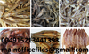 Germany Dried & Fresh Stock Fish,Cod,Haithe,Haddock, Dried Stock Fish Heads