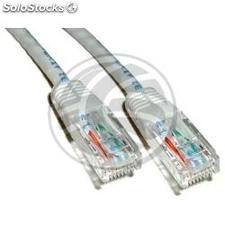 Gray Category 6 UTP cable 50cm (RJ52)
